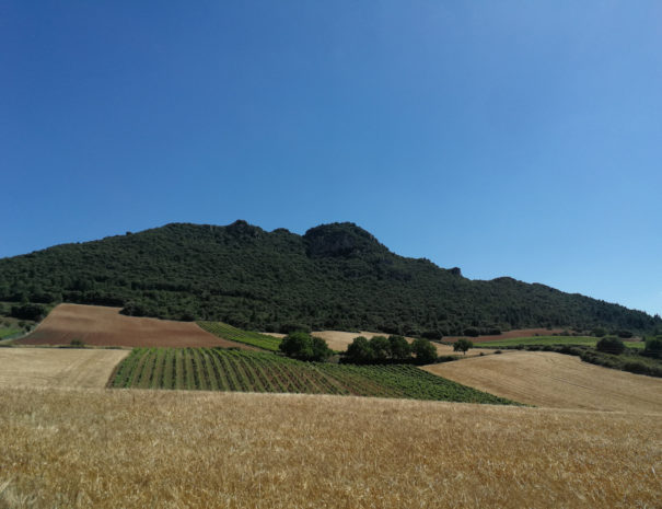 Alavas-slopes-view-Wilextours