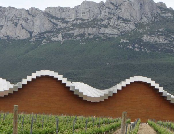 wine laguardia
