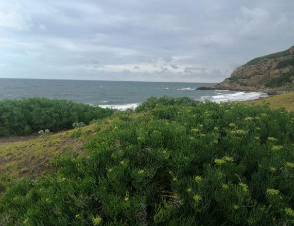 Azkorri-beach-playa-in-Getxo-Wilextours