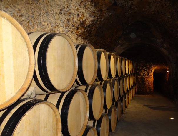 Casaprimicia-wine-barrels-Wilextours