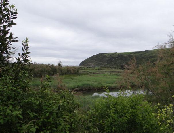 Iñurritza-wetland-humedal-Wilextours