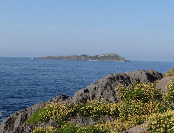 Izaro-island-Wilextours