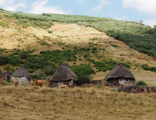 Somiedo-traditional-farm-Wilextours