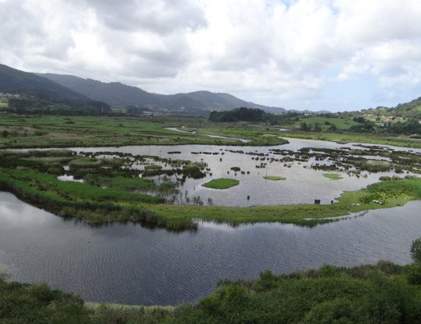 Urdaibai-marshes-vista-Wilextours