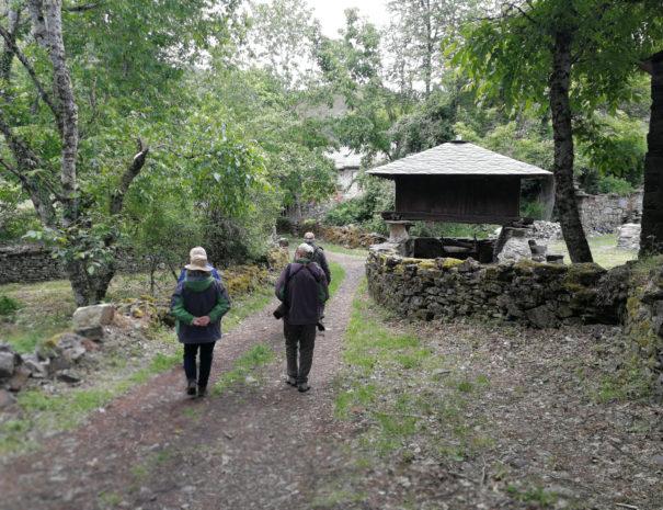 visitors-walk-horreo-Wilextours