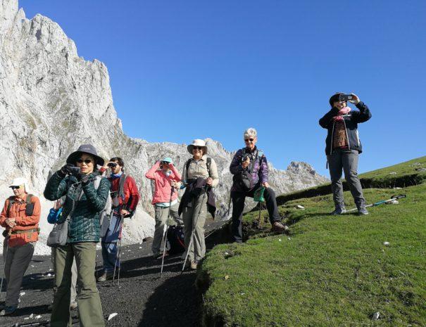 portada slide Chamois watching in Picos de Europa Wilextours-min